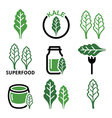 Superfood - kale leaves green icons set vector image vector image