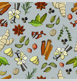 various aromatic spices and herbs made in cartoon vector image vector image