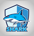cartoon shark with blue shield vector image vector image