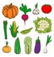 Colored sketched vegetables for agriculture design vector image vector image