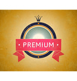 Colorful vintage premium label vector image vector image