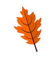 fall season oak leaf graphic vector image vector image