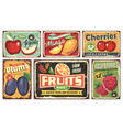 fruit market vintage signs collection vector image vector image
