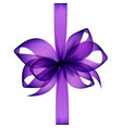 purple bow and ribbon top view on white background vector image vector image