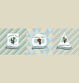 three colored labels with cactus vector image