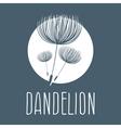 Abstract fluffy dandelion flower logo vector image vector image