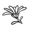 calendula flower icon simple style vector image