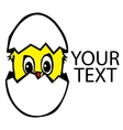 Chicken in the broken egg vector image vector image