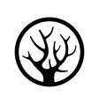 decorative simple tree logo in circle vector image vector image
