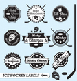 Hockey Champs Labels vector image vector image