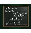 hormones molecule blackboard vector image vector image