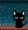 lonely black cat pixel art vector image vector image