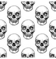pattern with human skull vector image vector image