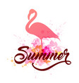 Pink flamingo and lettering vector image