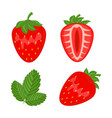 set of red strawberry berryes whole half and leaf vector image