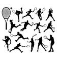 tennis 3 vector image vector image