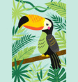 toucan on branch among tropical plants vector image