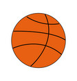 basketball ball sport equipment supply icon vector image vector image