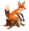 funny fox is playing with the drum vector image vector image