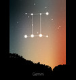 gemini zodiac constellations sign with forest vector image