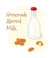 homemade almond milk glass bottle with whole vector image vector image