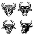 set of bull heads icons on white background vector image vector image