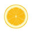 sliced colored sketch style fruit lemon vector image vector image