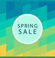 spring sale banner template design vector image vector image