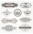 decorative labels quality vector image vector image