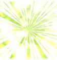 greenery sun beams vector image vector image