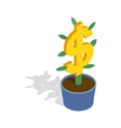Money tree icon isometric 3d style vector image vector image
