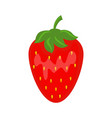colorful juicy red strawberry vector image vector image
