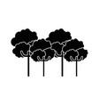 nature trees cartoon vector image vector image