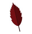 red persimmon leaf graphic vector image vector image