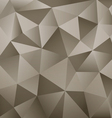 Background Abstract Polygon vector image vector image