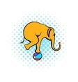 Circus elephant on the ball comics icon vector image