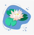 flower and leaves lotus water lily white