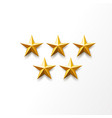 golden star ranking symbol top award vector image vector image