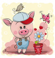 greeting card cute pig with flower vector image vector image
