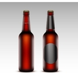 set brown bottles red beer with without labels vector image
