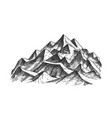 summit of mountain landscape ink texture vector image