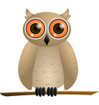 Brown owl with orange eyes vector image vector image