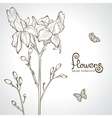 flowers silhouette vector image vector image