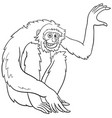 gibbon ape cartoon animal character coloring book vector image vector image