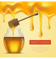 honey melted background vector image