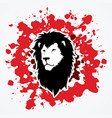 lion head leo face vector image