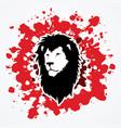 lion head leo face vector image vector image