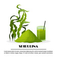 spirulina poster with seaweeds powder smoothie vector image