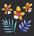 watercolor orchid flowers set vector image vector image