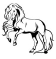 wild horse black and white vector image